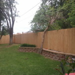 Western Red Cedar privacy fenc